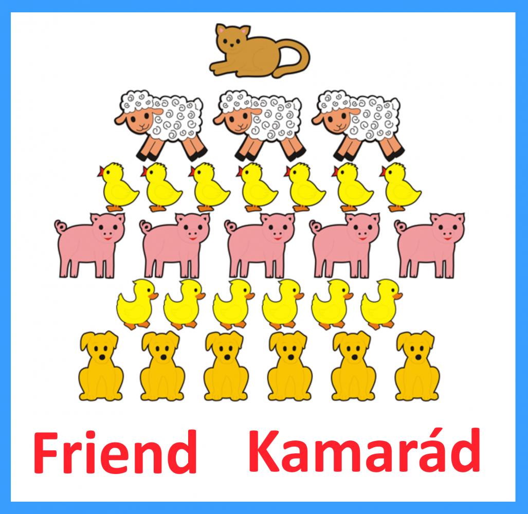Kamarád + Friend